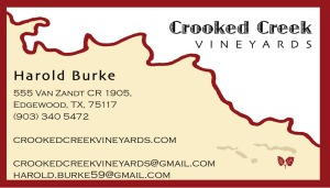 CCV Business Card